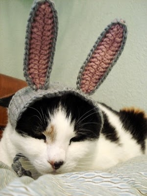 xmoonbloom kitty hat 4.jpg
